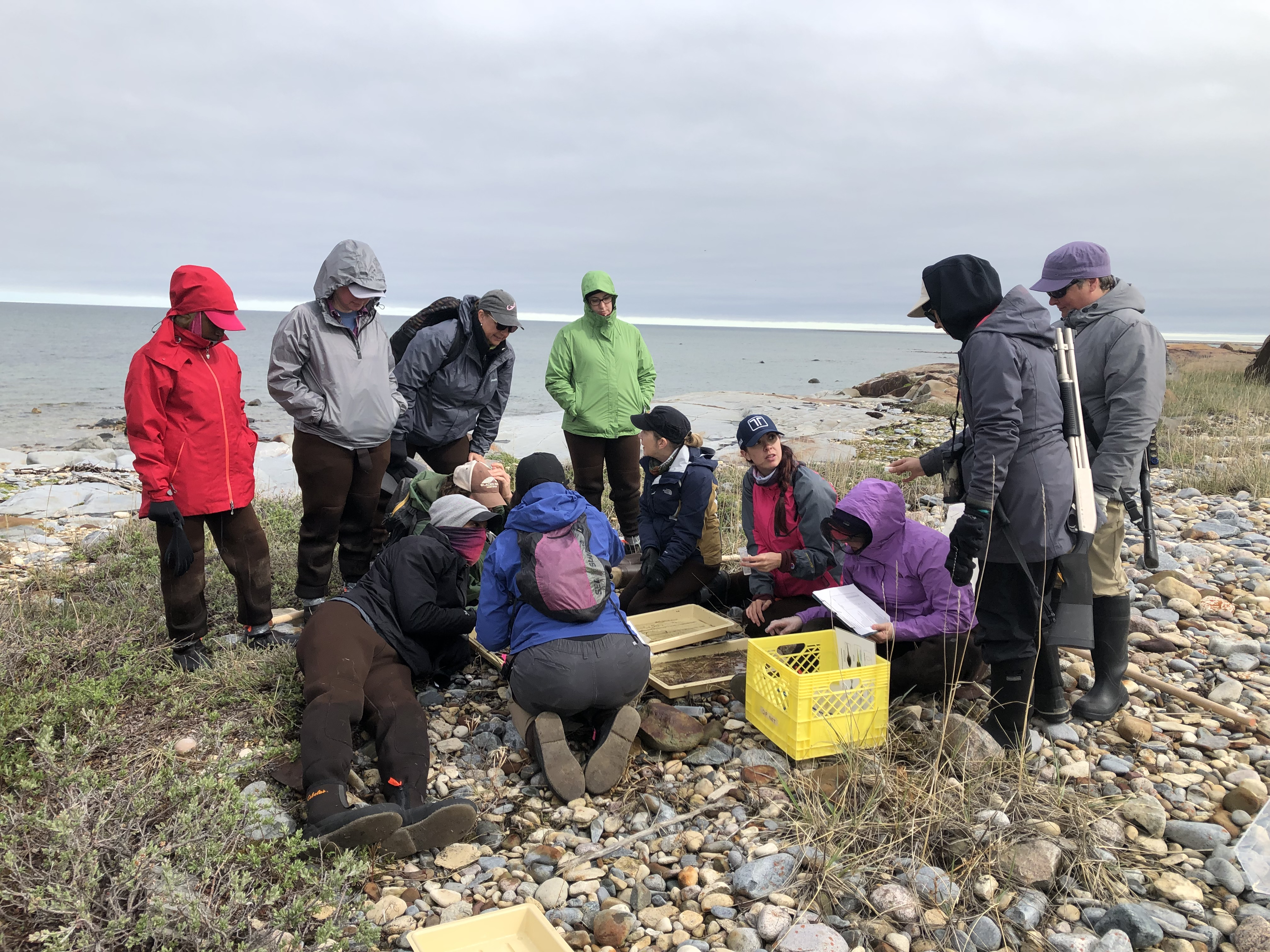 Cotter Science Teacher Joins Earthwatch Teacher Fellowship Team